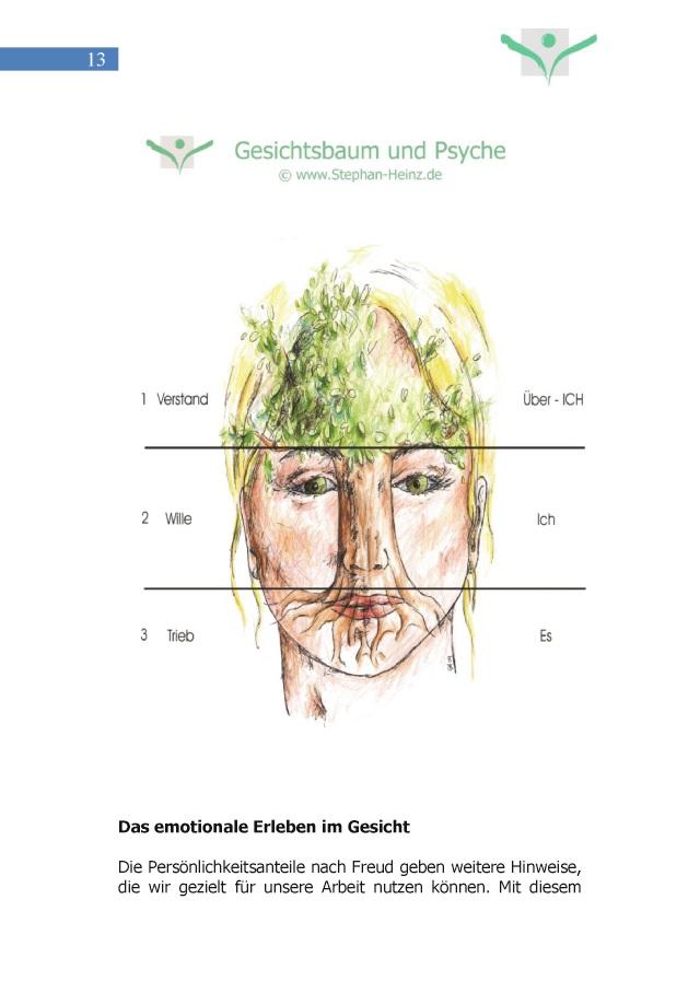 Gesichtsmerkmale physiognomie facial