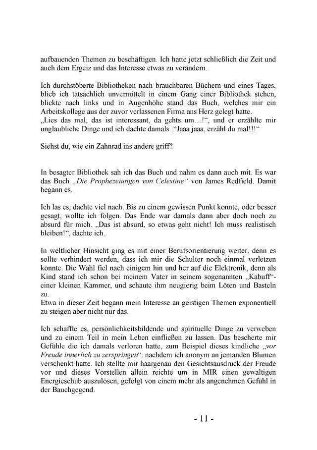 Bod Leseprobe Phönixflug