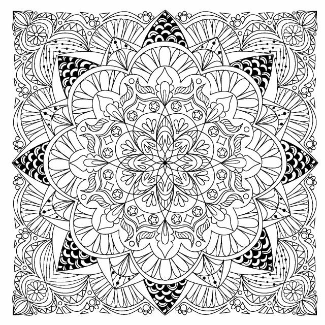 Bod Leseprobe Mandalas Und Muster Zum Ausmalen